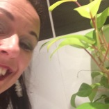 A plant in the loo