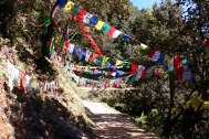 Prayer flags hanging on mountain